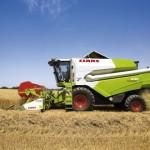 Экспортные цены на российскую пшеницу снижаются семь недель подряд