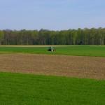 Что происходит с территориями Тимирязевской сельхозакадемии?
