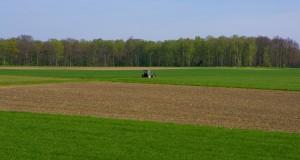 Для защиты от латифундизма в России ФАС не исключает введения земельных квот