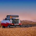 Сельхозпредприятия Пензенской области демонстрируют показатель урожайности зерновых свыше 60 ц/га