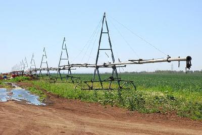В России будут активно бороться с опустыниванием сельхозземель