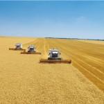 Сотрудники ФСБ и ФНС пришли в компании агрохолдингов из-за возможной неуплаты налогов