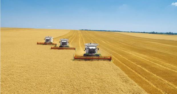 «СовЭкон»: российскому зерновому рынку угрожает очередной рекордный урожай в 2017 году