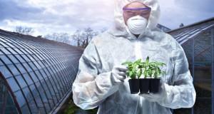 Ученые, политики и журналисты соберутся в Казани, чтобы обсудить вопрос запрета ГМО в России