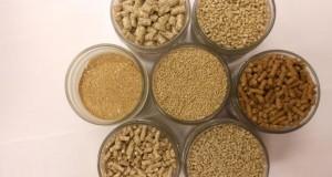 Эксперт: коллизия с НДС может грозить банкротством в РФ импортерам кормов для животных