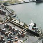 Структура белгородской ГК «Эфко» получила судебный запрет на перевалку пальмового масла в порту Тамань