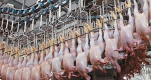 Правительство РФ может снизить импортную пошлину на мясо птицы из Бразилии