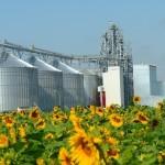 ОЗК построит грузовой узел на юге России для отправки зерна на экспорт