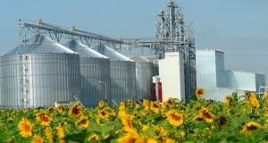 «Мираторг» намерен запустить семеноводческий центр в Орловской области за 850 млн рублей к середине лета