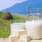 В России начался эксперимент по маркировке молочной продукции