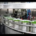 Интерес к переработке овощей только просыпается