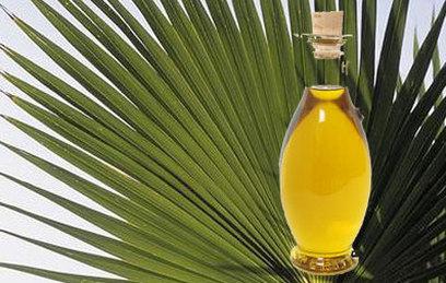 Пальмовое масло составило около 80% импорта жиров в Россию