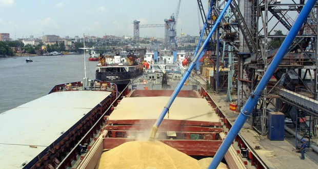 Россельхознадзор приостанавливает выдачу сертификатов на экспорт пшеницы во Вьетнам