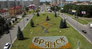 В Брянской области планируют построить завод по переработке рапса