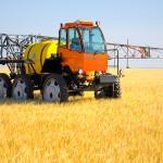 МЭР назвало преждевременными выводы о пестицидах как причине массовой гибели пчел в РФ