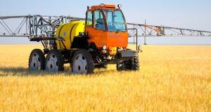Египет планирует обжаловать решение суда о запрете импорта пшеницы из РФ
