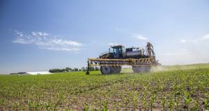 Особенности защиты колоса озимой пшеницы от вредителей и болезней в 2020 году