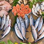 II Международный рыбопромышленный форум