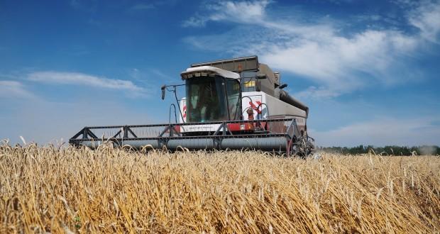 На Ставрополье собрали свыше 9 млн тонн зерновых