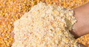 У продуктов на растительной основе может появиться свой отдельный  код ТН ВЭД ЕАЭС